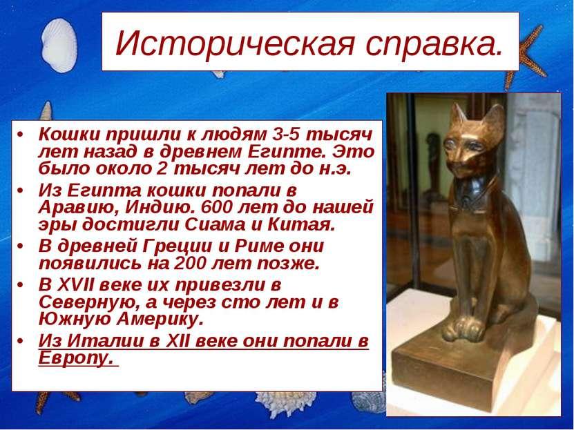 Историческая справка. Кошки пришли к людям 3-5 тысяч лет назад в древнем Егип...