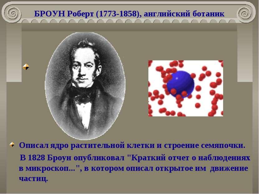 БРОУН Роберт (1773-1858), английский ботаник Описал ядро растительной клетки ...