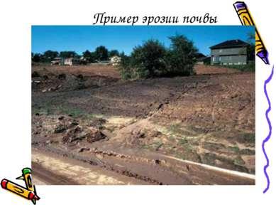 Пример эрозии почвы