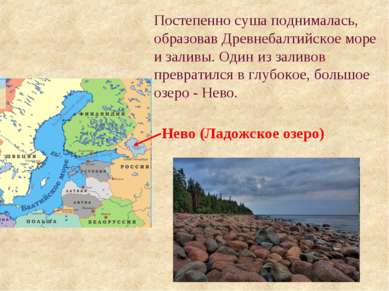 Постепенно суша поднималась, образовав Древнебалтийское море и заливы. Один и...