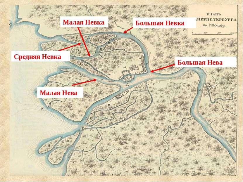 В дельте Нева распадается на рукава. Около 4 тыс. лет назад воды Нево подняли...
