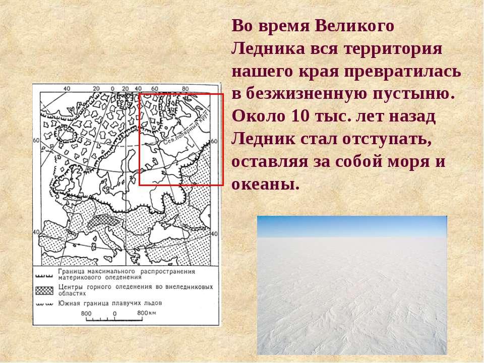Во время Великого Ледника вся территория нашего края превратилась в безжизнен...
