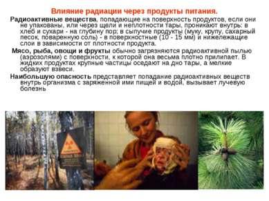 Влияние радиации через продукты питания. Радиоактивные вещества, попадающие н...