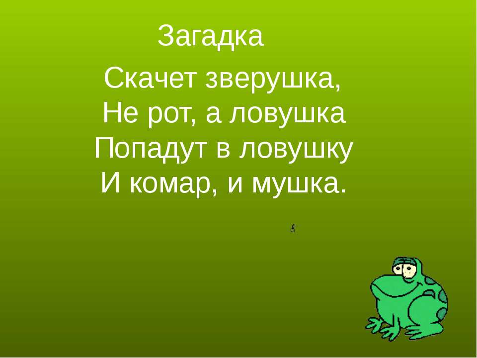 Загадка Скачет зверушка, Не рот, а ловушка Попадут в ловушку И комар, и мушка.