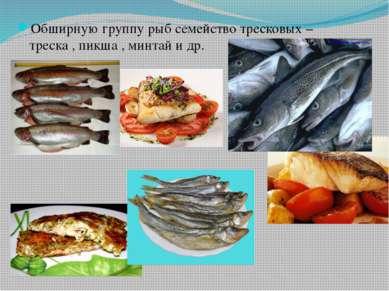Обширную группу рыб семейство тресковых – треска , пикша , минтай и др.