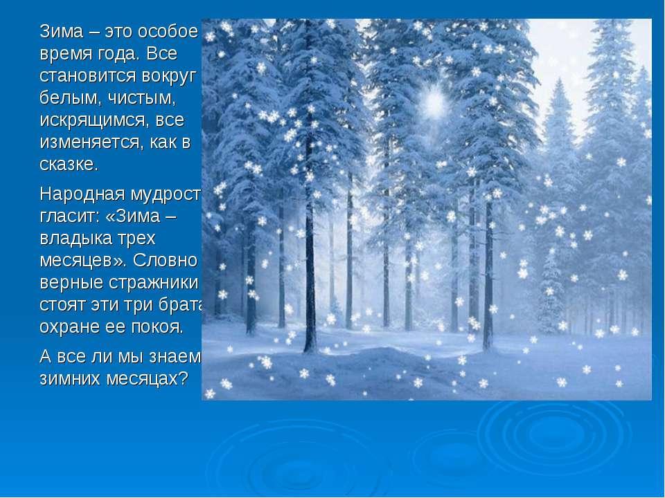 Зима – это особое время года. Все становится вокруг белым, чистым, искрящимся...