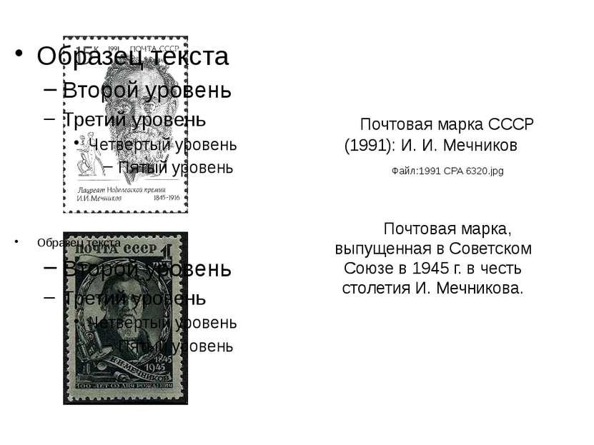 Почтовая марка СССР (1991): И. И. Мечников Файл:1991 CPA 6320.jpg Почтовая ма...