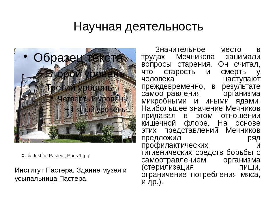 Научная деятельность Значительное место в трудах Мечникова занимали вопросы с...