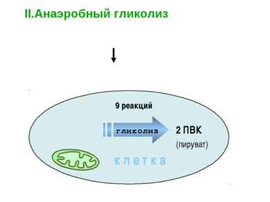 Глюкоза Полисахариды 2 ПВК II.Анаэробный гликолиз – бескислородный этап к л е...