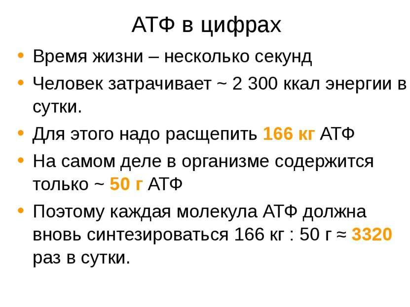 АТФ в цифрах Время жизни – несколько секунд Человек затрачивает ~ 2 300 ккал ...