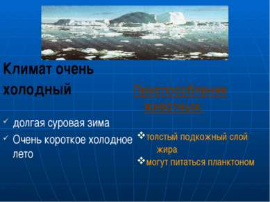 Климат очень холодный долгая суровая зима Очень короткое холодное лето Приспо...