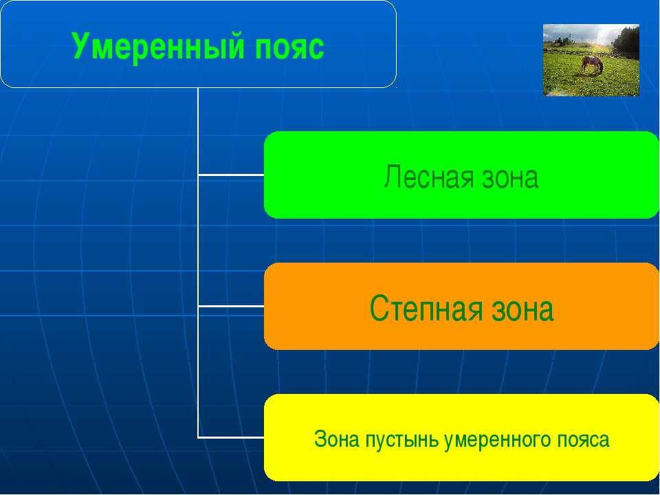 Умеренный пояс Лесная зона Степная зона Зона пустынь умеренного пояса Главная...