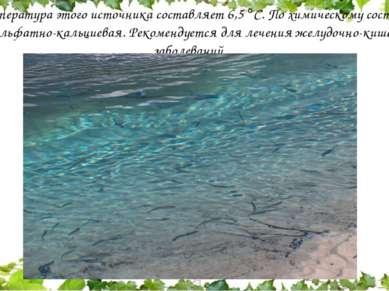 Температура этого источника составляет 6,5 С. По химическому составу вода сул...