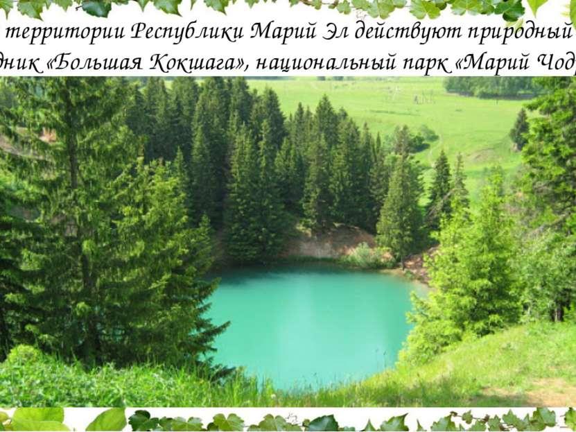 На территории Республики Марий Эл действуют природный заповедник «Большая Кок...