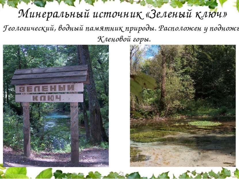 Минеральный источник «Зеленый ключ» Геологический, водный памятник природы. ...
