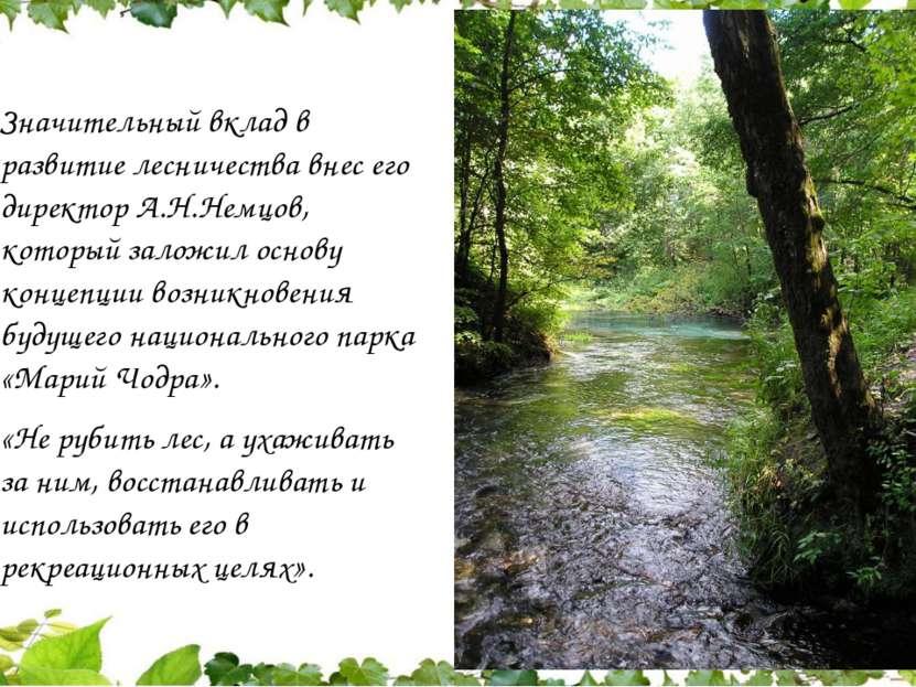 Значительный вклад в развитие лесничества внес его директор А.Н.Немцов, котор...