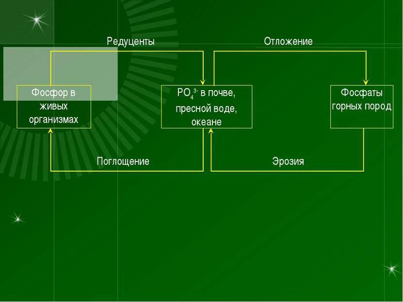 РО43- в почве, пресной воде, океане Фосфаты горных пород Фосфор в живых орган...