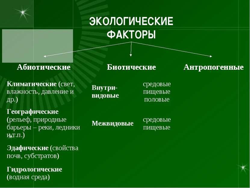 сканворды классификация экологических факторов по мончадскому этом случае работнику