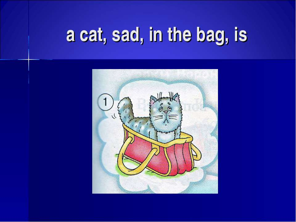 a cat, sad, in the bag, is