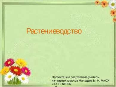 Растениеводство Презентацию подготовила учитель начальных классов Мальцева М....