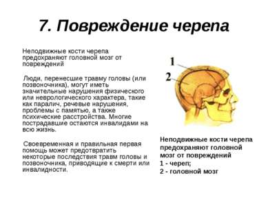 7. Повреждение черепа Неподвижные кости черепа предохраняют головной мозг от ...