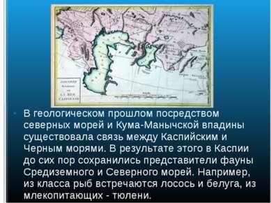 В геологическом прошлом посредством северных морей и Кума-Манычской впадины с...