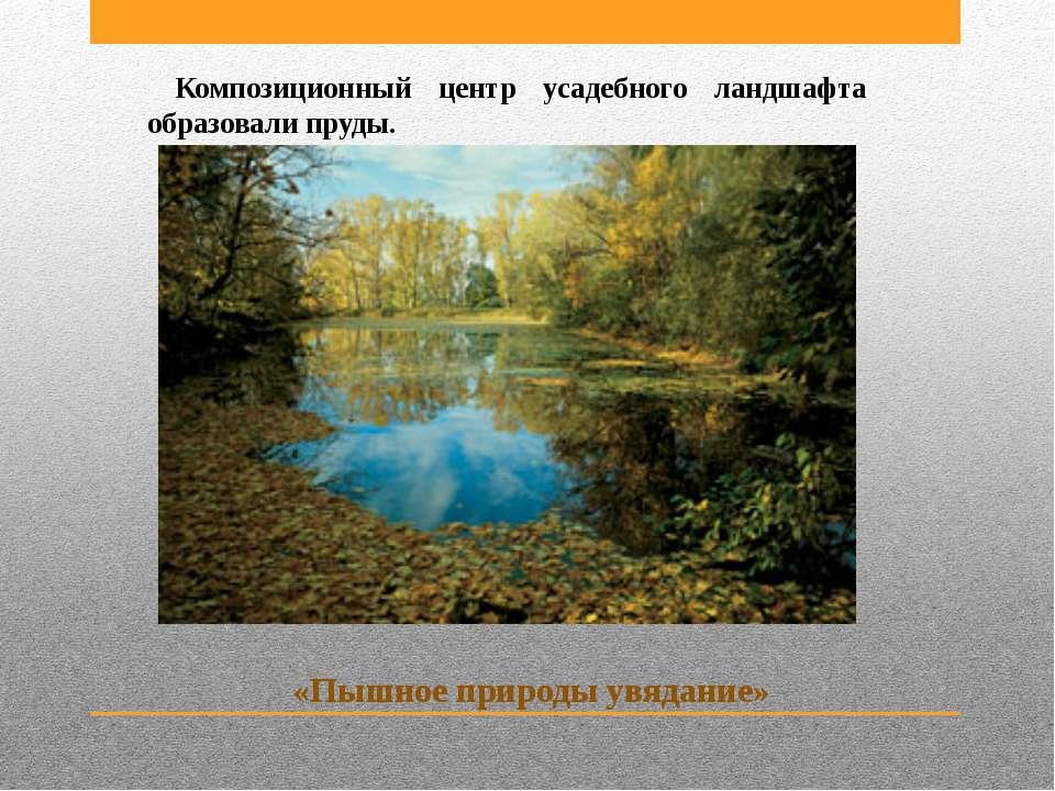 Композиционный центр усадебного ландшафта образовали пруды. «Пышное природы у...