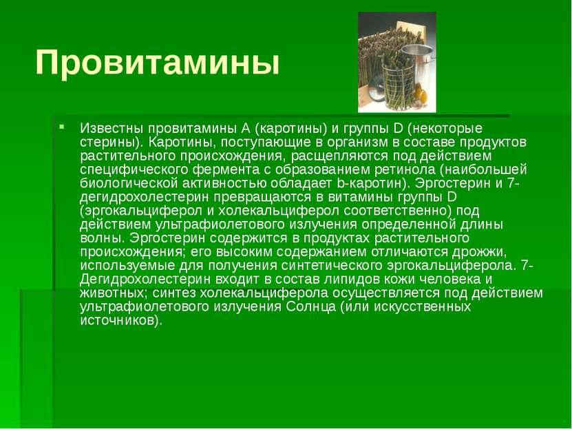 Провитамины Известны провитамины А (каротины) и группы D (некоторые стерины)....