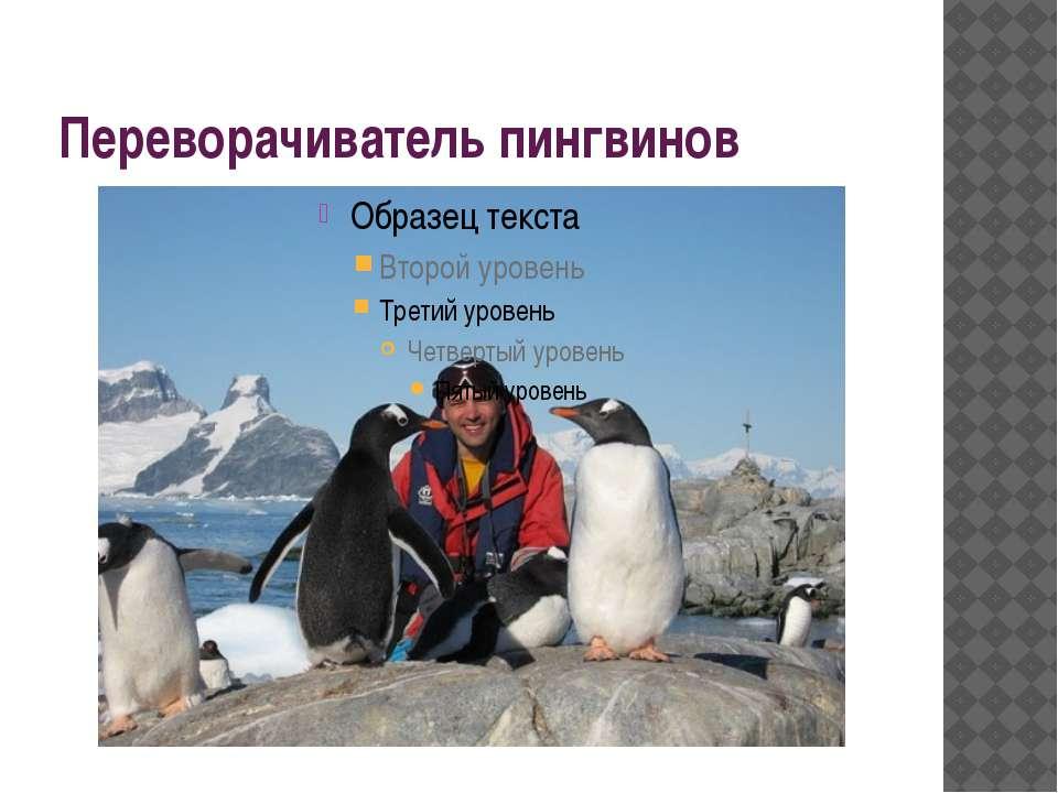 Переворачиватель пингвинов