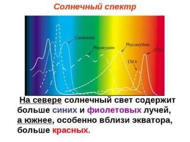 На севере солнечный свет содержит больше синих и фиолетовых лучей, а южнее, о...