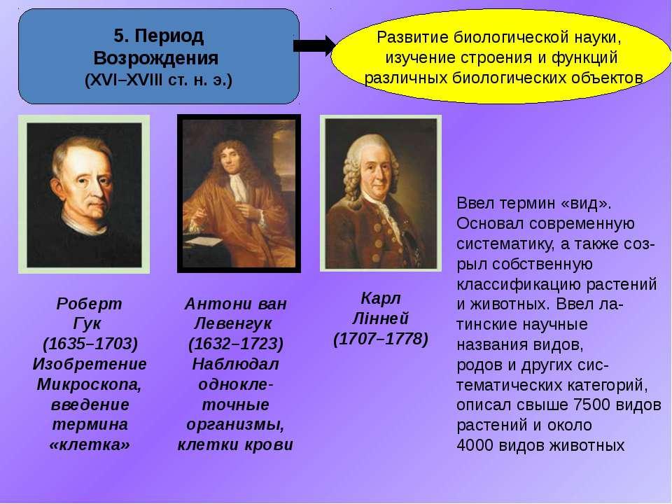 5. Период Возрождения (ХVІ–XVІІІ ст. н. э.) Развитие биологической науки, изу...