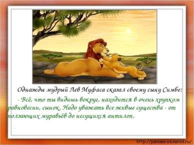 Однажды мудрый Лев Муфаса сказал своему сыну Симбе: - Всё, что ты видишь вокр...