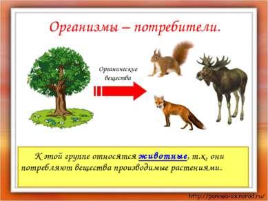 Организмы – потребители. К этой группе относятся животные, т.к. они потребляю...