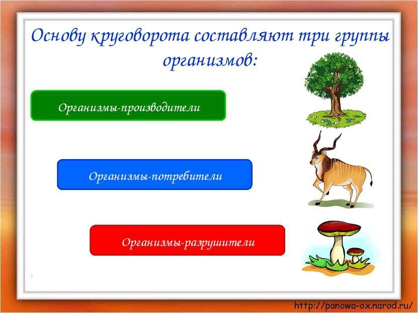 Организмы-производители Организмы-разрушители Организмы-потребители Основу кр...