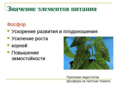 Значение элементов питания Фосфор Ускорение развития и плодоношения Усиление ...