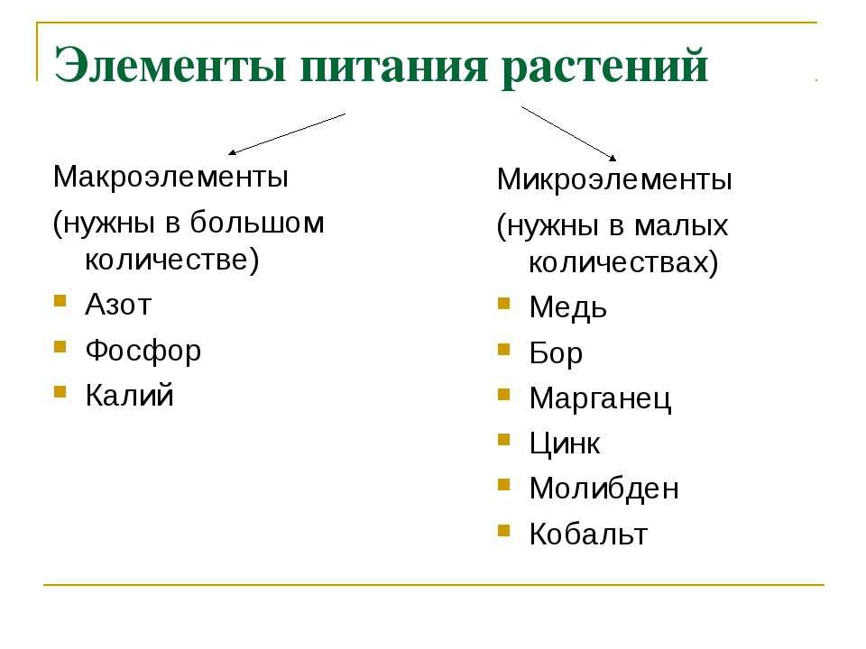 Элементы питания растений Макроэлементы (нужны в большом количестве) Азот Фос...