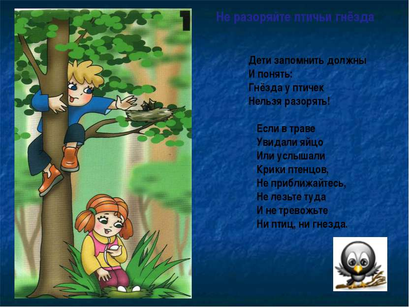 Не разоряйте птичьи гнёзда Дети запомнить должны И понять: Гнёзда у птичек Не...