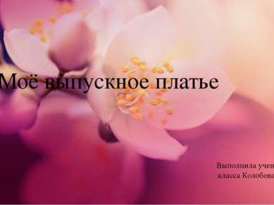 Моё выпускное платье Выполнила ученица 11«Б» класса Колобова Наталья 2013 г.
