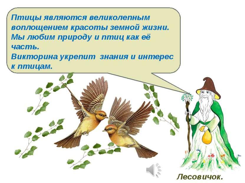 Птицы являются великолепным воплощением красоты земной жизни. Мы любим природ...