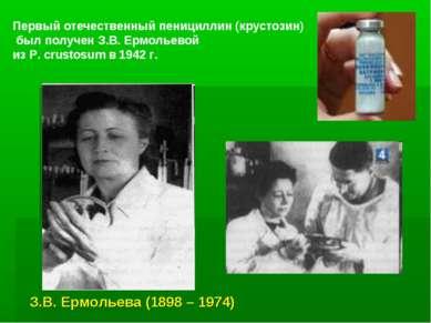 Первый отечественный пенициллин (крустозин) был получен З.В. Ермольевой из P....