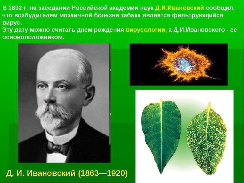 а я В 1892 г. на заседании Российской академии наук Д.И.Ивановский сообщил, ч...
