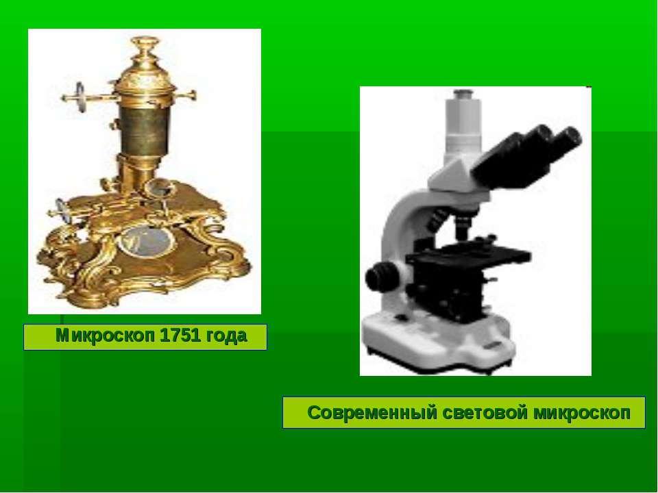 Микроскоп 1751 года Современный световой микроскоп