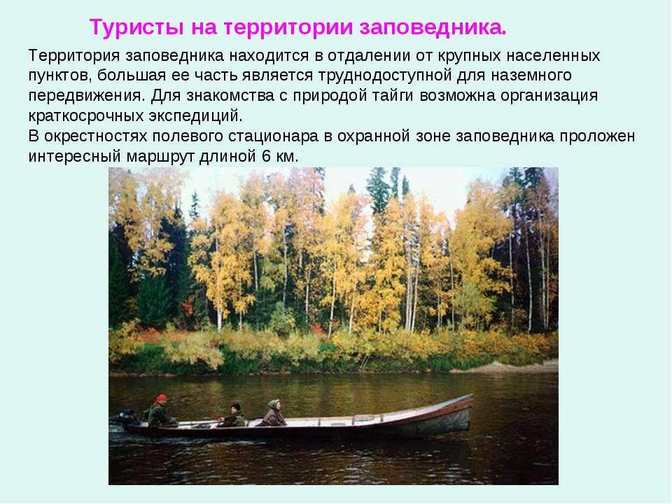 Территория заповедника находится в отдалении от крупных населенных пунктов, б...