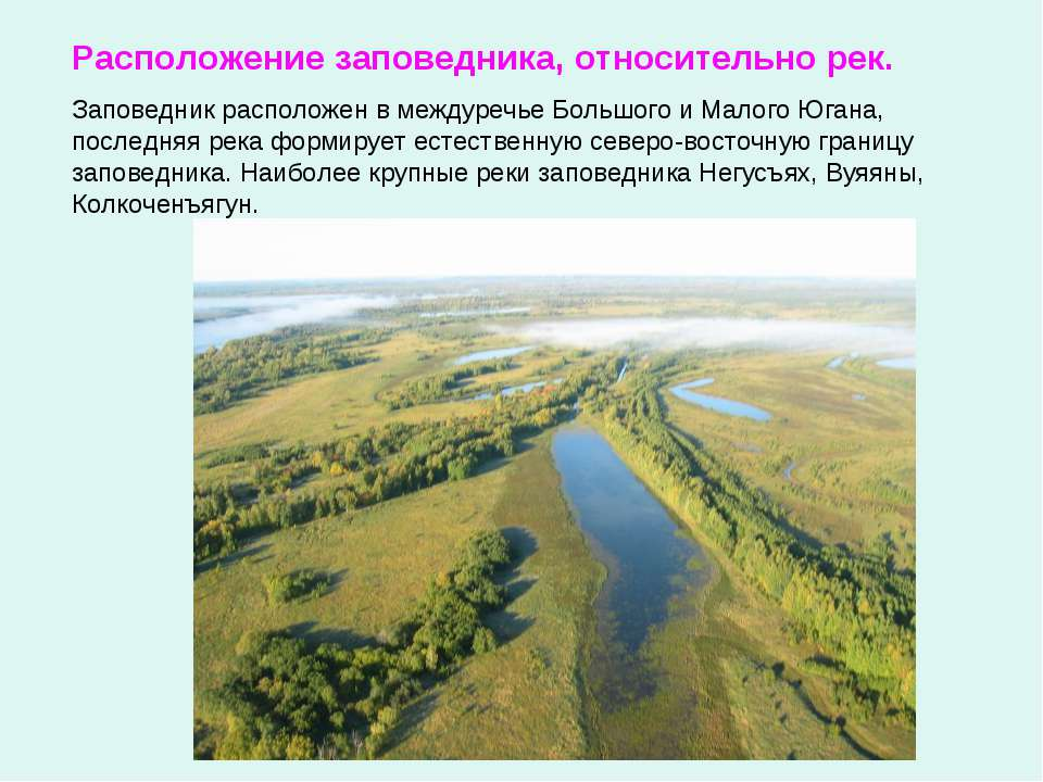Заповедник расположен в междуречье Большого и Малого Югана, последняя река фо...
