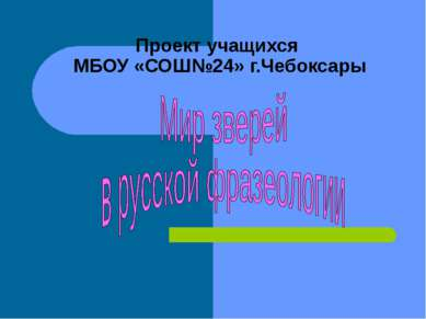 Проект учащихся МБОУ «СОШ№24» г.Чебоксары