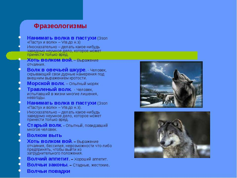 Фразеологизмы Нанимать волка в пастухи (Эзоп «Пастух и волк» – VIв.до н.э) Ин...