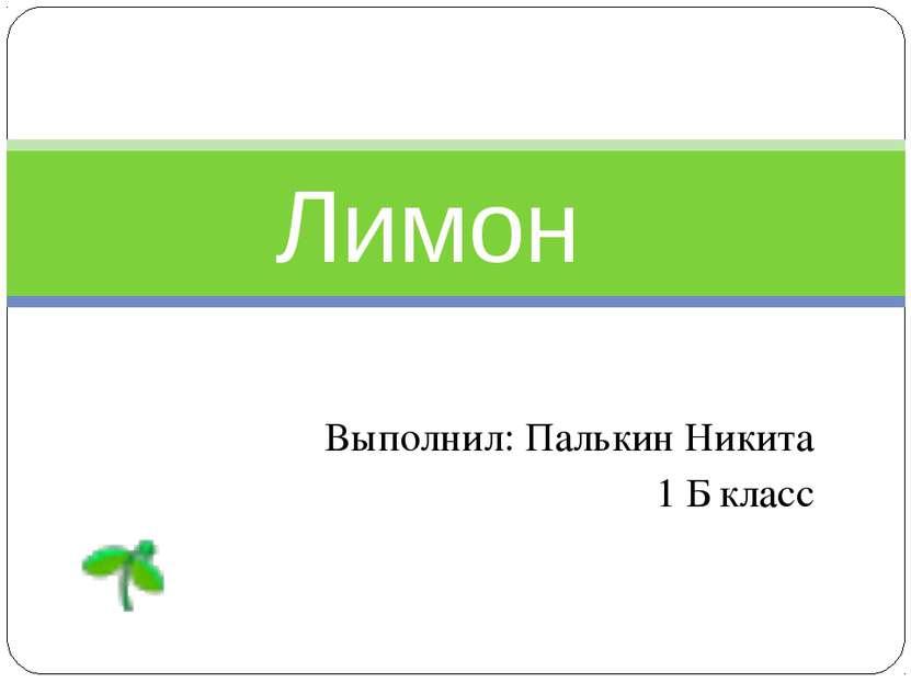 Выполнил: Палькин Никита 1 Б класс Лимон