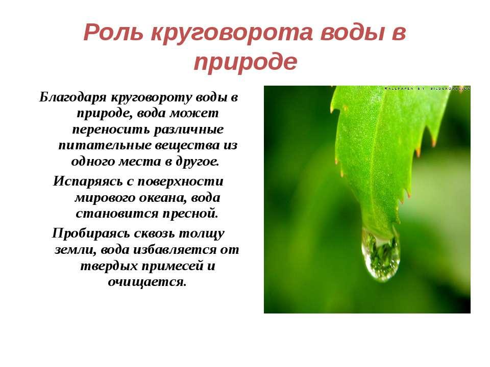 Роль круговорота воды в природе Благодаря круговороту воды в природе, вода мо...