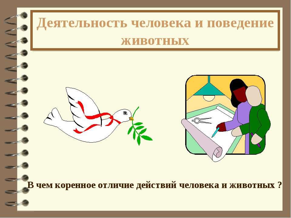 Деятельность человека и поведение животных В чем коренное отличие действий че...