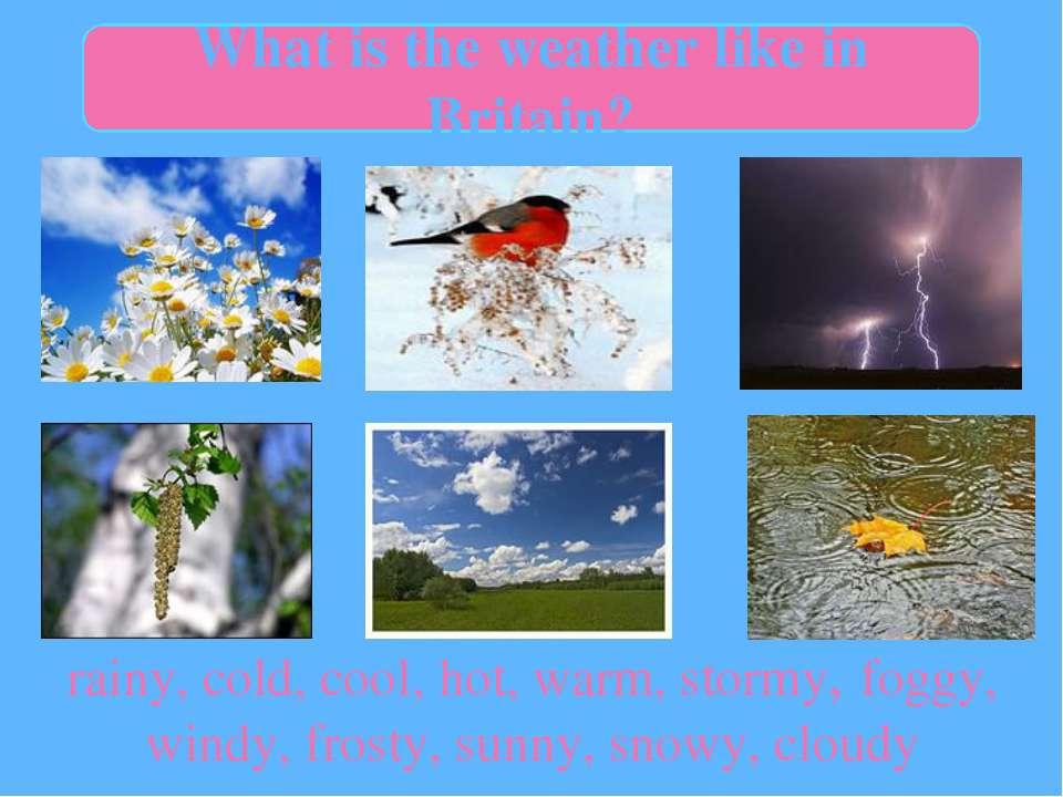 rainy, cold, cool, hot, warm, stormy, foggy, windy, frosty, sunny, snowy, clo...